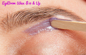 EyebrowWax-service-price